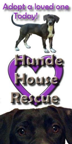 Hunde House Rescue